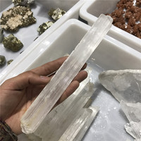 Wholesale Clear Gypsum Fossil Crystal Specimen Laboratory Specimen
