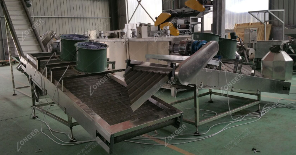 Factory Price Continuous Peanut Roasting Machine Pumpkin Seeds Roaster