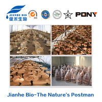 High quality Natural Ganoderma lucidum extract Polysaccharides 10%-50%/Reishi extract/Reishi mushroom extract triterpene 1-15%