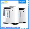New Style 20 lpm Medical Gas Equipment Home Oxygen Making Machine for Produce Oxygen, PSA Portable Oxygen Generating Apparatus