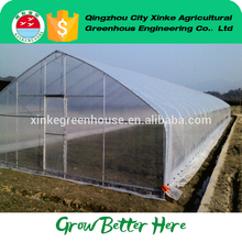 China cheap single span green house for farm With Good After-sale Service
