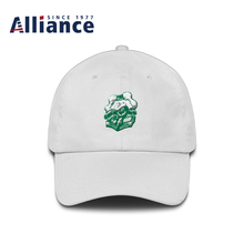 Latest Launch Attractive Images Best Gift Customize 5 Panel Snapback Hats Different Types of Caps