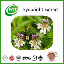 GMP Manufacturer supply Kosher Medecine Eyebright Extract powder