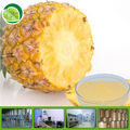 Water soluble pineapple flavour powder