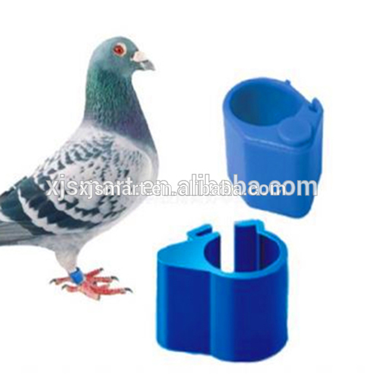 Colorful Top Quality Pigeon rings for sale rifd ring tag