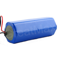 6S2P Li-ion Battery Pack 24V 4Ah for Electric Tools