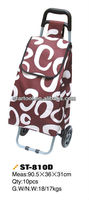 shopping trolley bag with cart