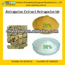 Hot Sale Astragalus Extract Astragaloside IV From GMP Factory