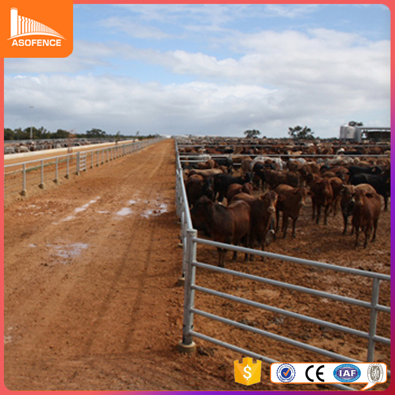 anping ASO sale iso 9001 quality 360 degree heavy welded stock cattle yard panel