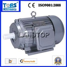 LTP Y Series 3 phase squirrel cage induction motor