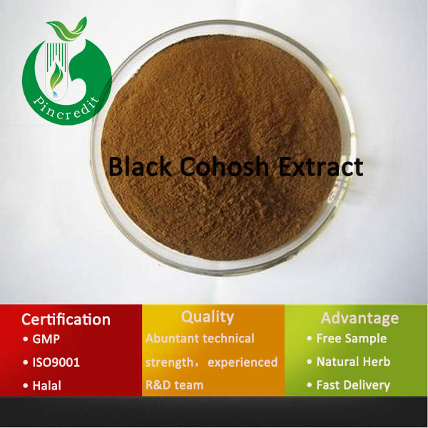 Organic Black Cohosh Extract/Black Cohosh Herb/Black Cohosh Extract