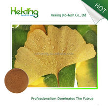 High quality Ginkgo biloba Extract / ginkgo biloba extract powder / ginkgo biloba leaf extract