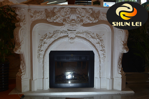 3 sided electric fireplace/masonry fireplace