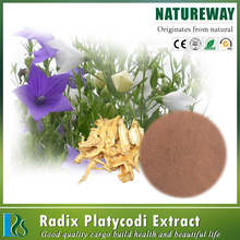balloon flower root extract/platycodon grandiflorum extract powder 4:1