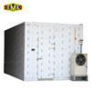 Cold Room Panel Machine,Frozen Cold Room For Meat And Fish,Freezer Room Unit