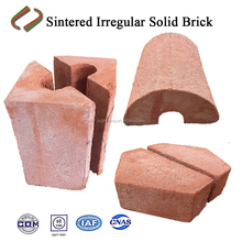 Special-shaped solid brick