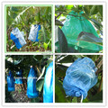 LDPE UV treated banana protection bag with micro perforations