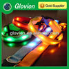 High light glowing led collar safety led training pet collar lighting dog collar
