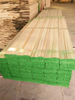 Paulownia Log with High Quality Paulownia Wood Timber