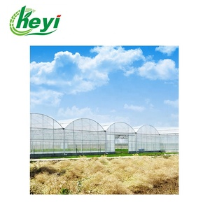 Hot Sale Hot galvanized steel frame Multi-span Film Agriculture Greenhouse for vegetables and flowers with full system