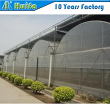 2017 Hot sale multi span plastic flat pack greenhouse for tomato