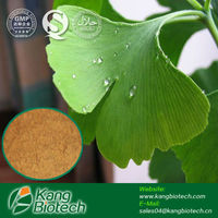 Favorable price best quality Ginkgo Biloba Extract Flavones 24% Lactones 6% in bulk supply