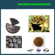 lowest price Toad cake/Toad Venom/Venenum Bufonis extract