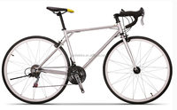 New style Fast Delivery dh road bike (TF-SPB-017)