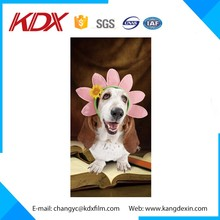 Factory!! Wholesale PET 3D Lenticular Postcard/3D Poster/3D Phone Case