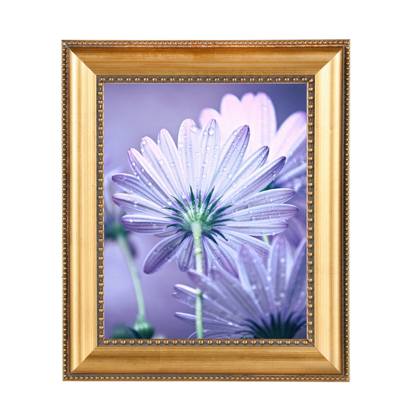 Picture frame series wooden photo frame