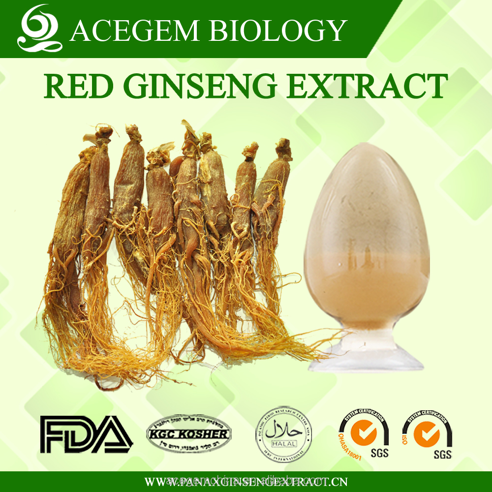 High Quality Red Ginseng Extract Heaven