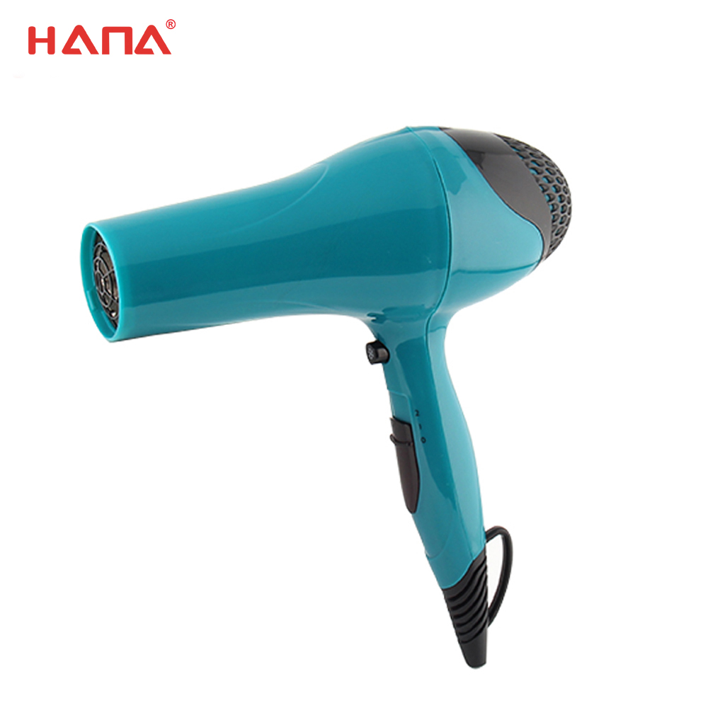 Hot Sale Low Price DC 2 Speed/2 Heat Setting professional travel hair dryer reviews