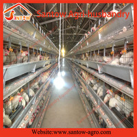 automatic large-scale industrial chicken coop equipments for good sale