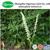 black cohosh extract/black cohosh root extract/2.5% Triterpene Glycosides