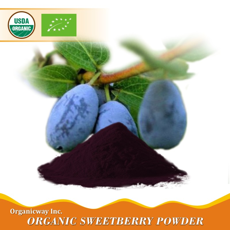NOP EU Certified organic sweetberry powder