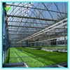 Customized Design Poly Tunnel Single Span