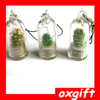 Oxgift new style, Cell Phone Strap,mini garden Baby tree