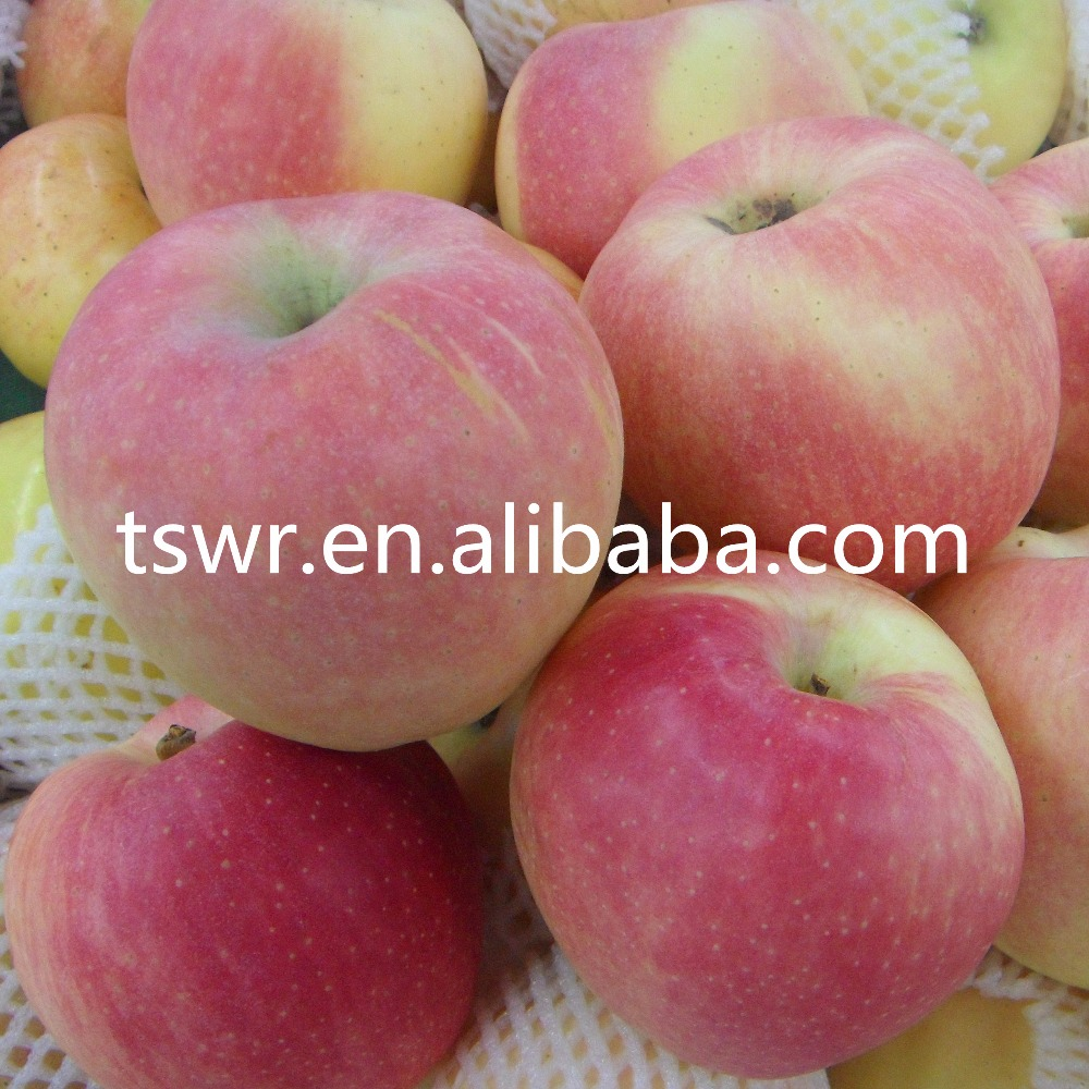 Chinese Fresh Apples Best Price Sweety Apples