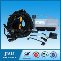 LPG ECU gas equipment conversion and CNG kits fuel injection Sequential system