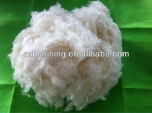 100% wheat protein fiber new founctional fibre
