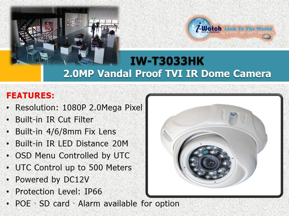 IW-T3033HK 2.0MP Vandal Proof TVI IR Dome Camera
