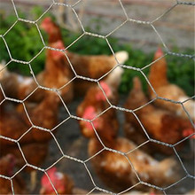 (24 years factory)Wholesale Chicken Rabbit Wire Mesh Cage/Low Price Hexagonal Netting/Galvanized Chain Link Fence