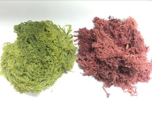 (Dried Seaweed) Dried red&green Tosaka
