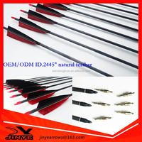 Professional 100%carbon fiber arrow for shooting, hunting carbon arrow with natural fletching