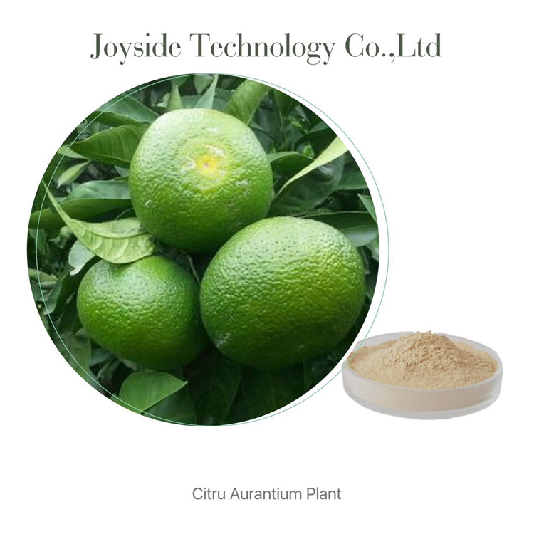 Best Selling Products Citrus Fruit Extract Food Supplement Raw Material