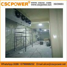 cold room freezer with bitzer compressor with lowest price