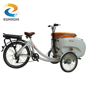 Adult electric 3 wheel bicycle cargo bike