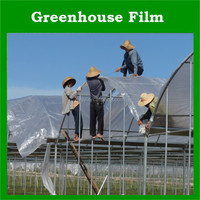 Agriculture Greenhouse Film Plastic Transparent Clear
