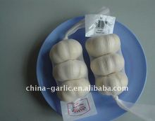 China Fresh White Garlic 2012 Price for Sale / 3 heads 200g/Mesh Bag Meet Europe Standard