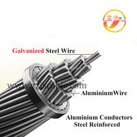 Aluminum Conductor Steel Wire Reinforced (ACSR)